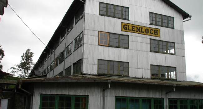 Te plantager og gamle te fabrikker på Sri Lanka