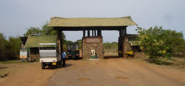Yala National Park – Safari i Yala