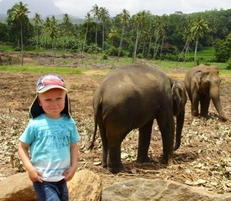 Oskar og elefanterne i Pinnawala