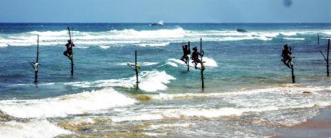 Fiskerne på pinde på Sri Lanka