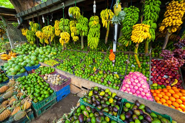 Salg af bananer sri lanka
